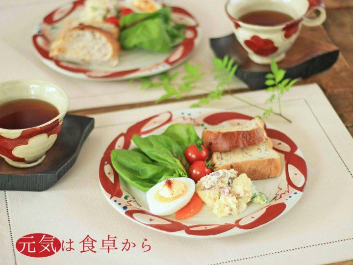 赤絵丸紋リム平大皿